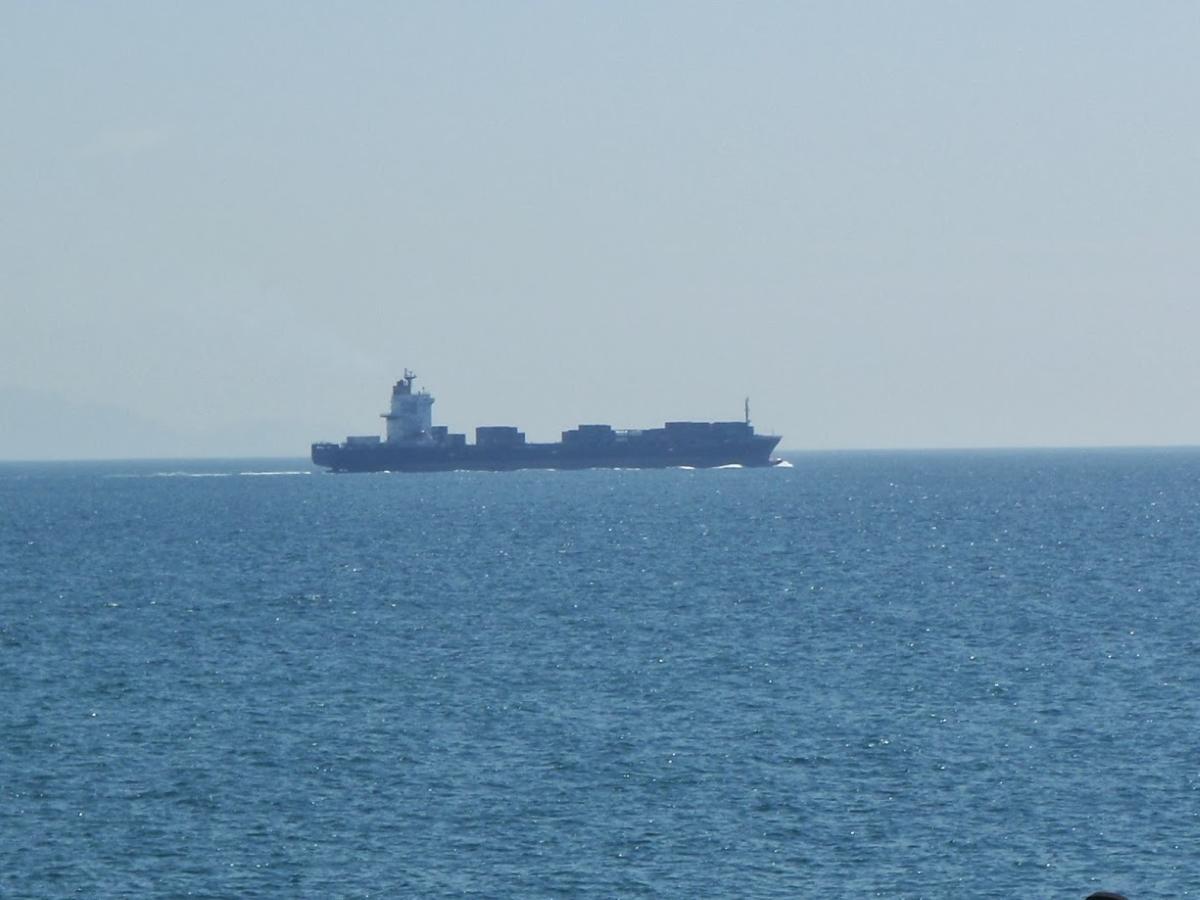 駿河湾を悠々と航海するコンテナ船