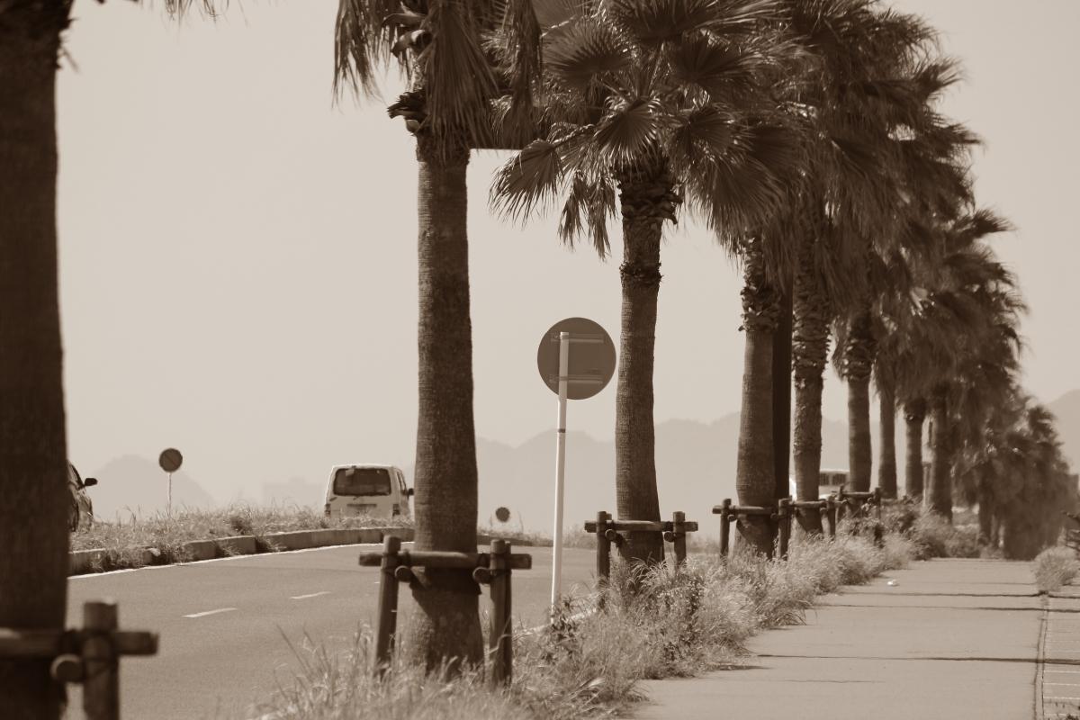 いちご海岸通り