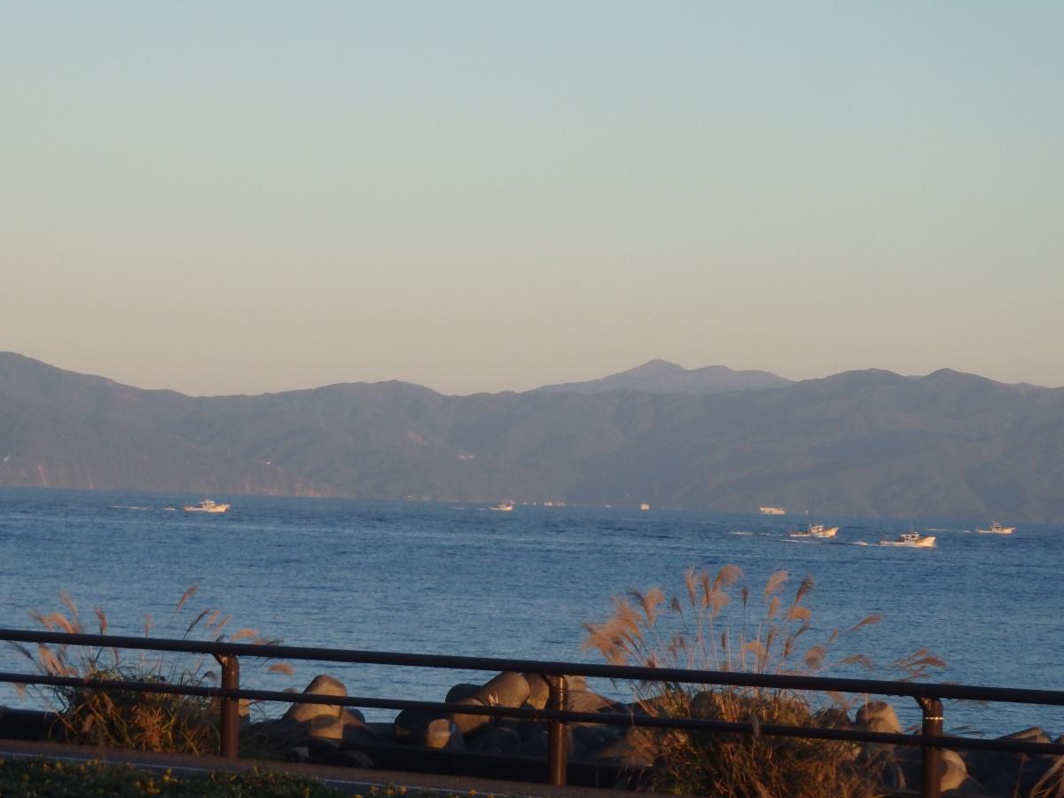 夜の桜えび漁の漁場に向かう漁船