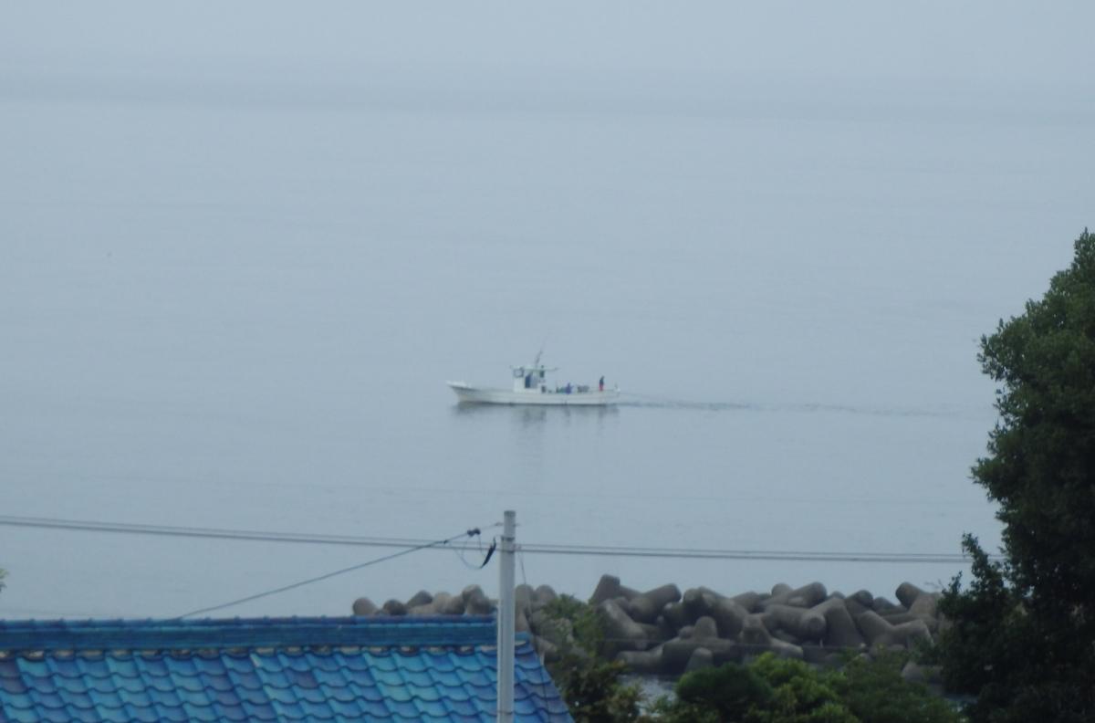 駿河湾のしらす漁船